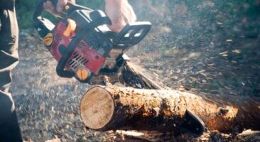 7 Best Professional Chainsaw and Reviews