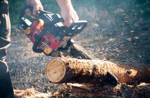 best professional chainsaw cutting wood